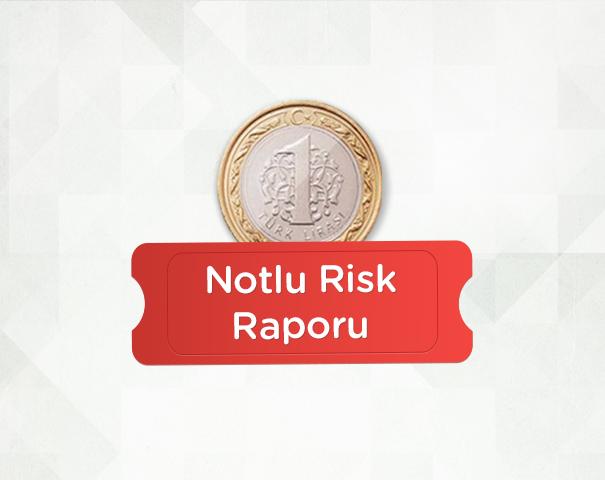 Kredi Notu ve Risk Raporunuz BKM Express'le 1 TL!